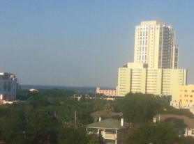 See that blue strip above the trees? It's Tampa Bay.